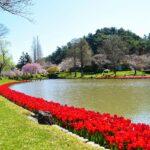 四季折々の色鮮やかな花々に囲まれた憩いのガーデン 浜名湖畔に位置するはままつフラワーパーク(静岡県浜松市)
